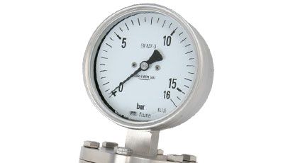 BAUMER BOURDON DPC100 Diaphragm Pressure Gauge
