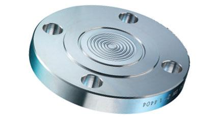 BAUMER BOURDON D82x Flanged Diaphragm Seal with Flush Diaphragm