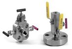 Block and Bleed Valves